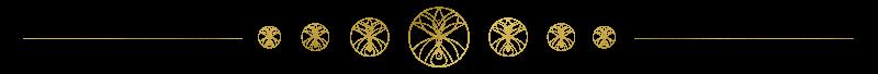 Shop Separator, Spiritual Business Coach, EAM® Mentor, Energy Alignment Method®, Maria Saraphina